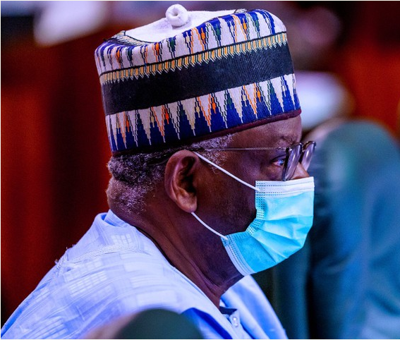 Amazing Profile of Prof. Ibrahim Gambari, Buhari's New Chief Of Staff