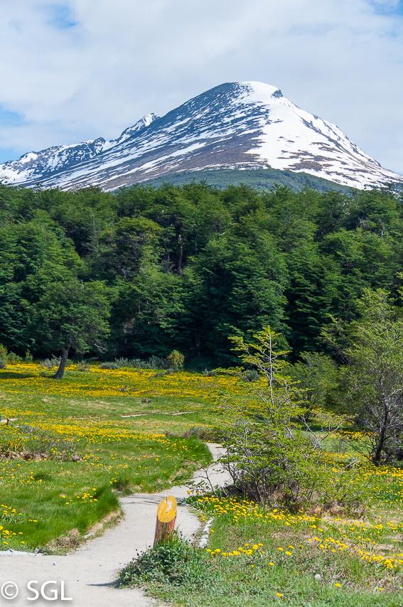 Parque Nacional Tierra del Fuego. Argentina.