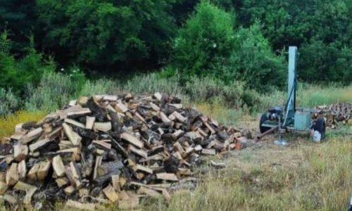 Μήνες συστηματικής συλλογής στοιχείων και στενή παρακολούθηση συχνά καθ' όλο το 24ωρο οδήγησαν τελικά τους δασικούς υπαλλήλους στον εντοπισμό λαθροϋλοτόμου στο δημόσιο δάσος Δελβινακίου και σε κατάσχεση των υλικών και των μέσων λαθροϋλοτομίας.