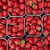 Σε επιφυλακή Αυστραλία και Νέα Ζηλανδία - Εντοπίστηκαν φράουλες με βελόνες