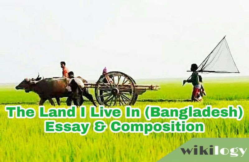 The Land You Live In (Bangladesh) Essay & Composition