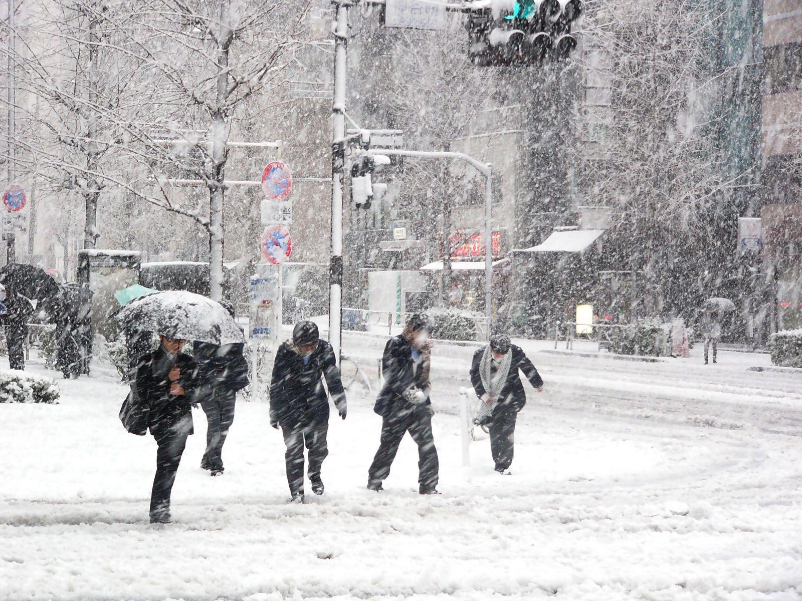 Snow Free Stock Photos