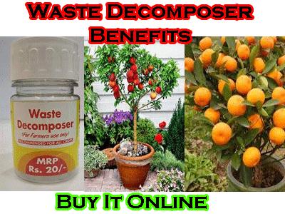 buy waste decomposer online