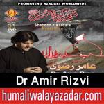 http://www.humaliwalayazadar.com/2015/10/dr-amir-rizvi-nohay-2016.html