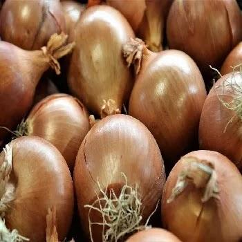 पिवळा कांदा, yellow onion vegetables name in Marathi