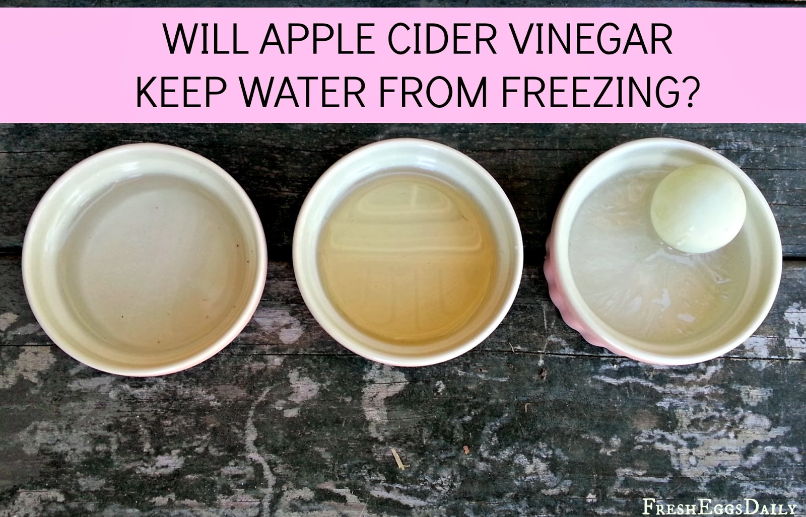 Does Apple Cider Vinegar Keep Water From Freezing?
