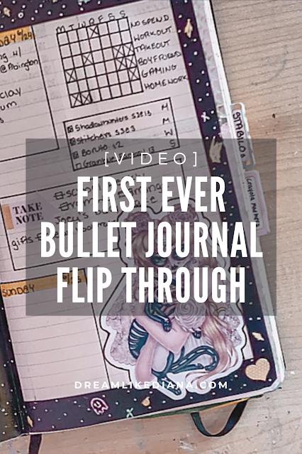 first ever bujo flip thru