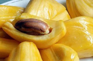 Benefits of Jackfruit Seeds