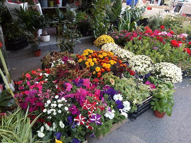 Guardamar, mercado semanal al aire libre, en calles céntricas