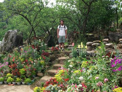 Ham Rong Flowers garden