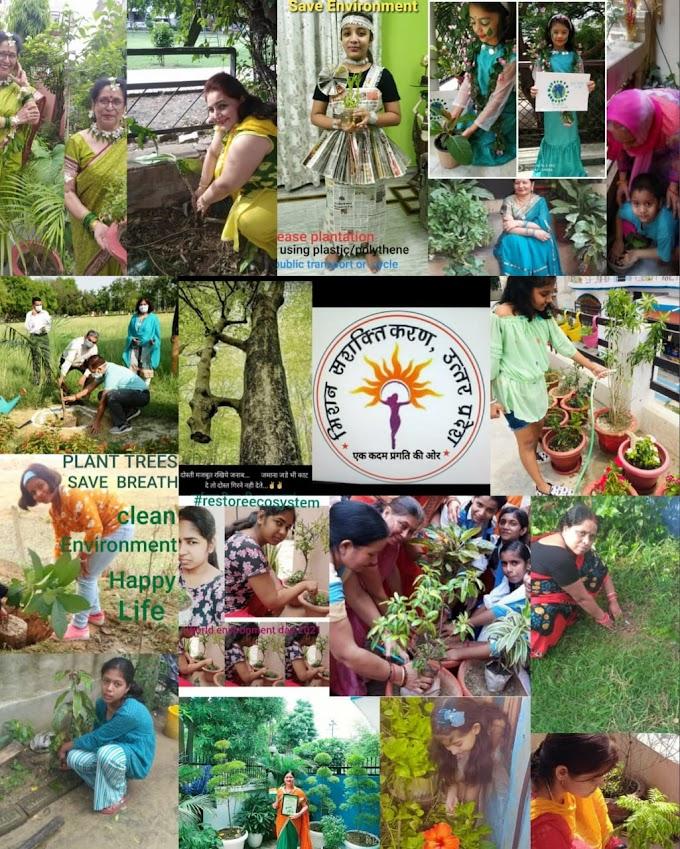 मिशन सशक्तिकरण संस्था ने कुछ इस अंदाज में मनाया पर्यावरण दिवस
