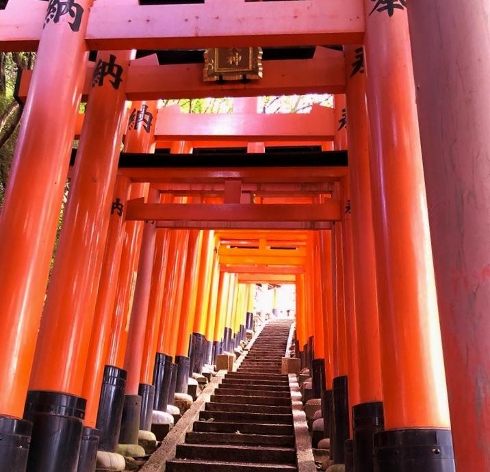 tours-kyoto-guia-espanol-fushimi-inari