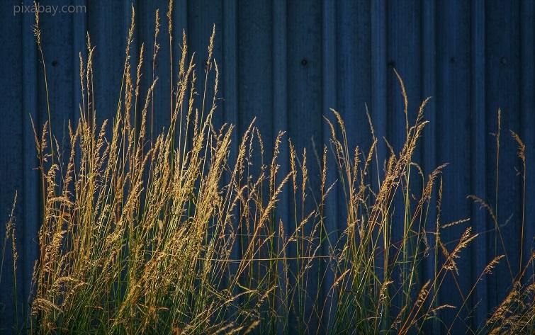 Gartendeko in Dunkelblau