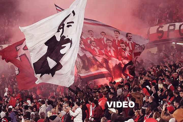 Benfica, adeptos, fans, estadio da luz, 1904 cantico,
