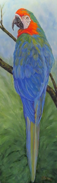 Macaw,original large oil painting