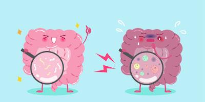 Factores influye microbiota intestinal