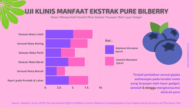 uji klinis manfaat ekstrak pure bilberry