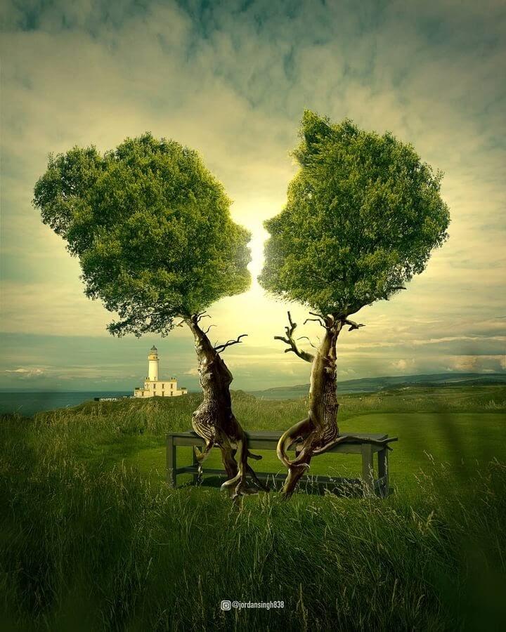 06-Trees-whispering-Jordan-Singh-www-designstack-co