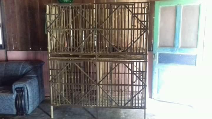 Membuat Kandang Ayam Bangkok 2 Tingkat 6 Pintu | KING