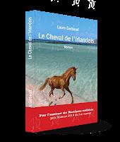 Mes couvertures; couverture; 3d; couverture 3D; cheval; roman; irlandais; cheval de l'irlandais; livre;