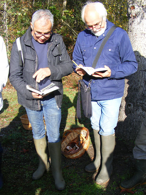 Two amateur mycologists consulting their field guides.  Indre et Loire, France. Photographed by Susan Walter. Tour the Loire Valley with a classic car and a private guide.