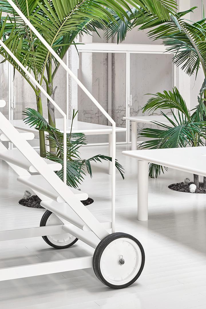 Las palmeras son la única nota de color en este espacio de trabajo y cultural totalmente blanco