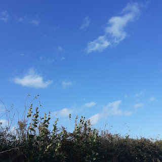 Blue sky, white fluffy cloud, a low border of hedge outlined