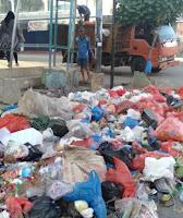 Volume Sampah Meningkat, Kabid Pertamanan Minta Penambahan Personil