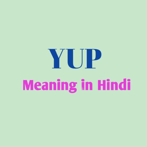 Yup Meaning in Hindi