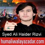 https://humaliwalaazadar.blogspot.com/2019/09/syed-ali-haider-rizvi-nohay-2020.html