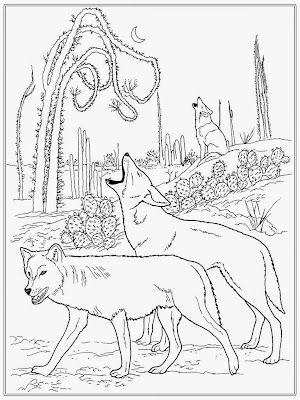 Realistic Wolf Adult Coloring Pages