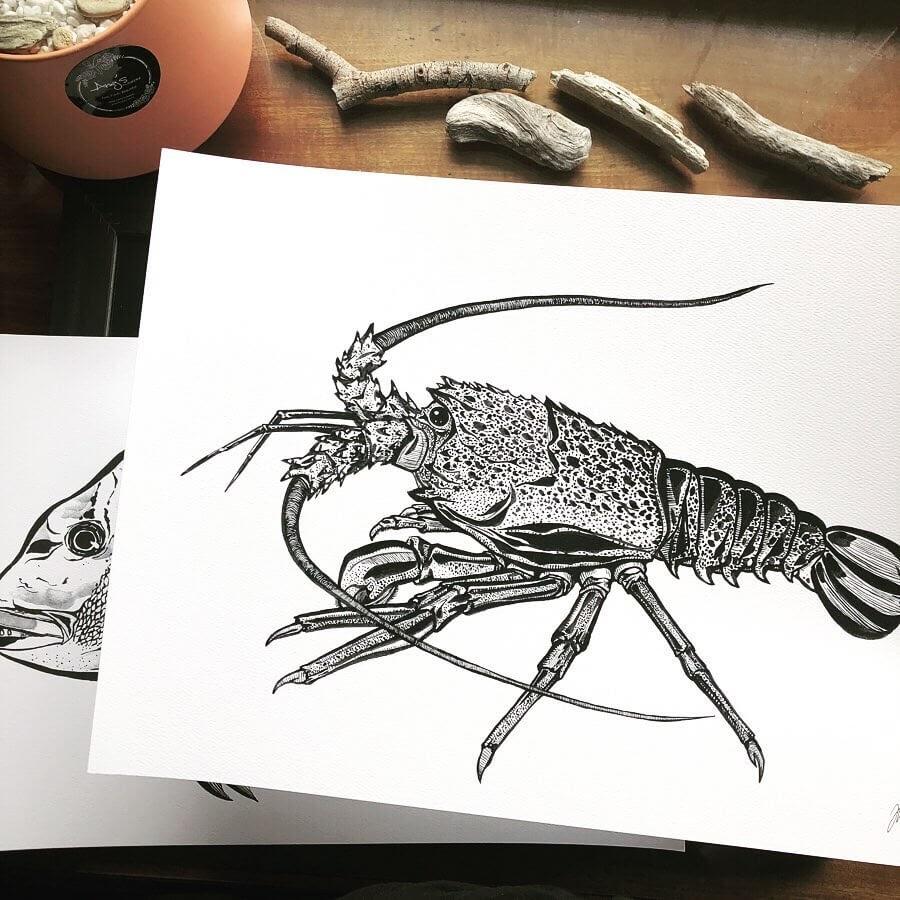 10-Lobster-Rachel-Lee-www-designstack-co