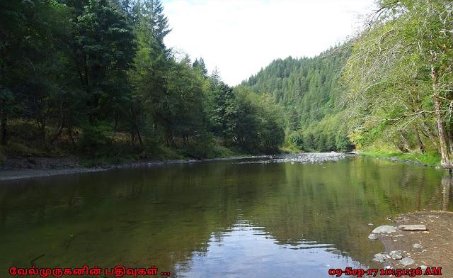 Oregon Wilson River