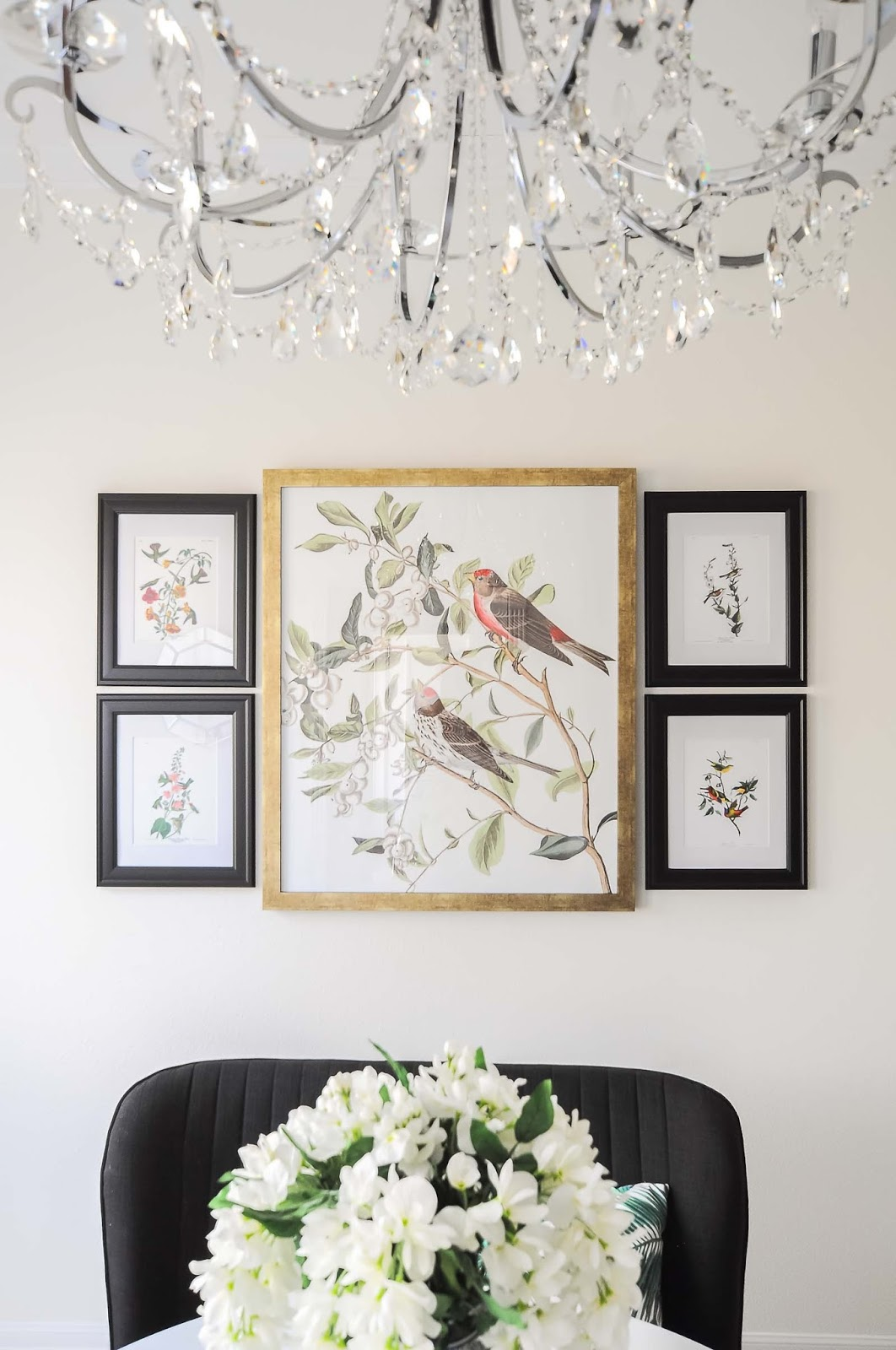 A chandelier frames the view of an audubon bird and botanical gallery wall in a dining room space.