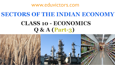 Class 10 - Economics - Sectors of Indian Economy Q & A (Part-3) (#eduvictors)(#class10economics)