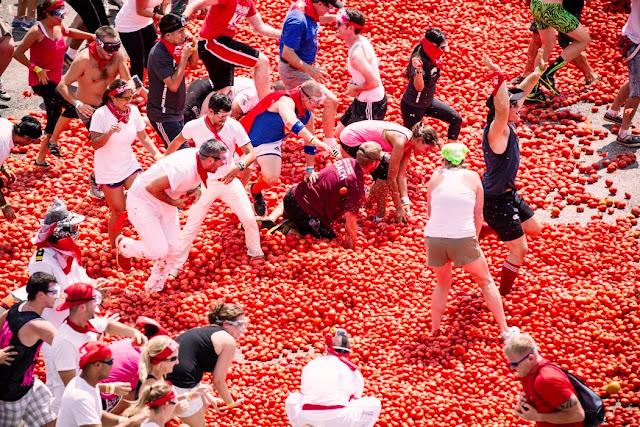 Cuando es la tomatina?