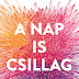 Nicola Yoon - A Nap is csillag