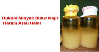 Hukum Minyak Bulus Najis Haram Atau Halal