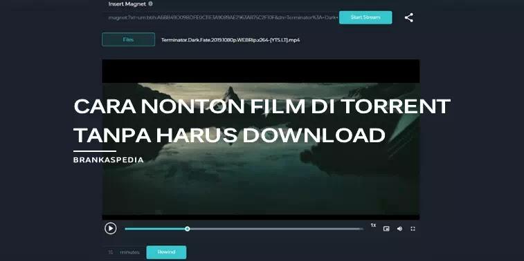 Cara Nonton Film di Torrent Tanpa Harus Download