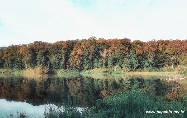 danau-tambing-wisata-hutan-lindung-berkabut-tebal