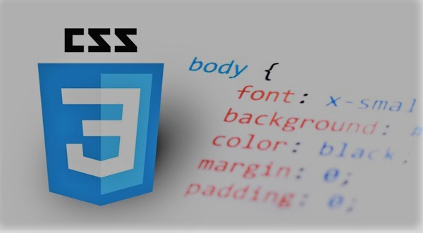 Cours CSS|Full Course on CSS