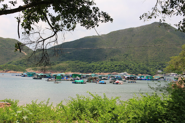 Yau Ley Fishing Village, Sai Kun Country Park, Hong Kong