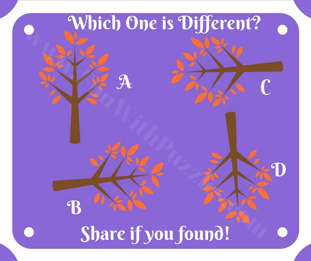 Mind twisting puzzle to find odd one out