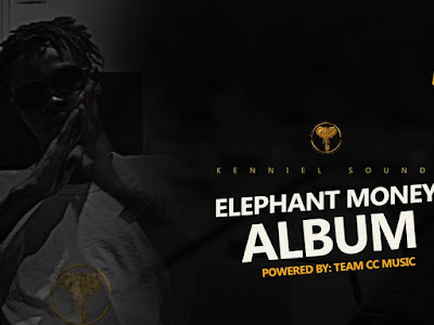 New album : Elephant Money Album