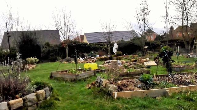 Tour du jardin au 15 février 2020 (vidéo)