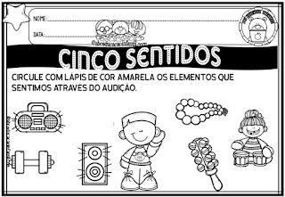 Os cinco sentidos educação infantil
