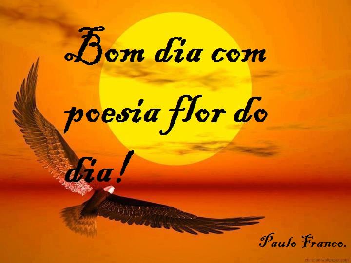 Mensagens Com Flores De Bom Dia: .: Bom Dia Com Poesia Flor Do Dia! Paulo Franco