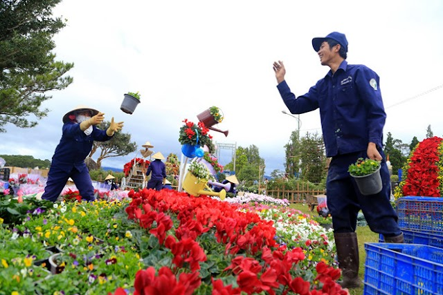 In December to visit the good land and listen to stories about Dalat and flowers