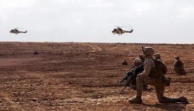 مناورات الأسد الإفريقي : ( African Lion Maneuvers  )