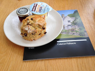Coleton Fishacre scone